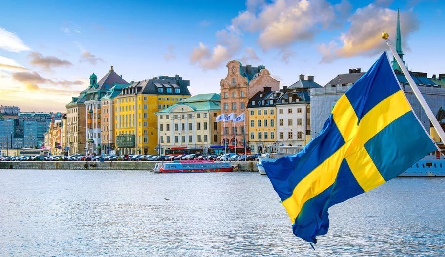 Suecia en silla de ruedas