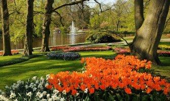 Amsterdam accesible, turismo accesible en amsterdam