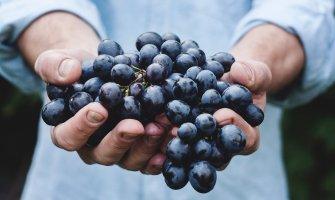 Viaje inclusivo a La Rioja