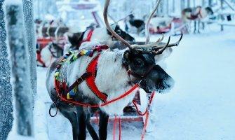 Viaje a Laponia en silla de ruedas